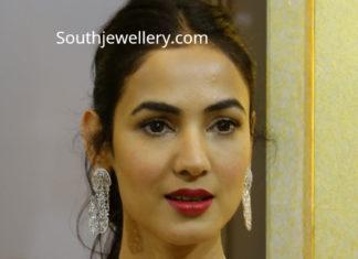 sonal chauhan in diamond necklace by vasundhara diamond roof