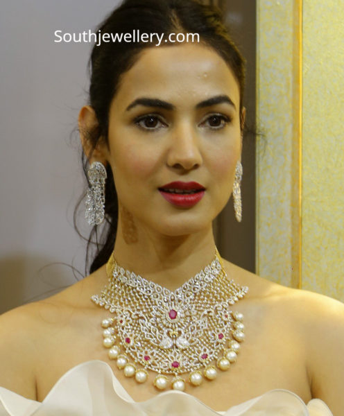 sonal chauhan in diamond necklace by vasundhara diamond roof