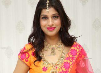 guttapusalu necklace and haram set by manepally (1)